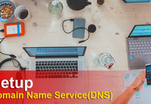 Domain Name Service (DNS) Setup