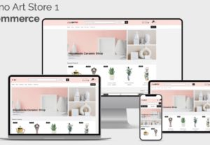 ECommerce Website Design Package